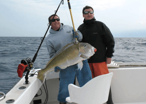 Chartering Bluefin in the winter can be rewarding.